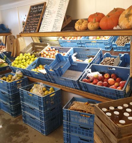 Vente de fruits de saison à Gozée