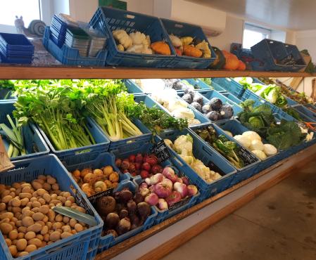 Vente de légumes de saison à Gozée
